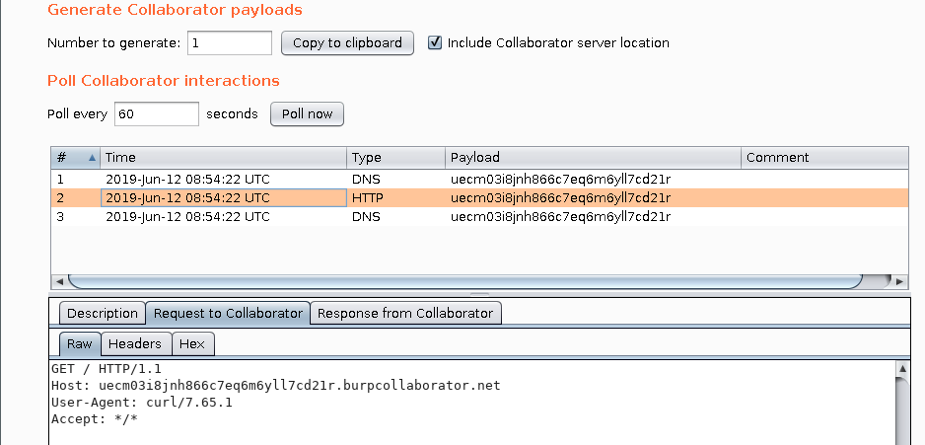 Screengrab of Burp Suite Collaborator in action